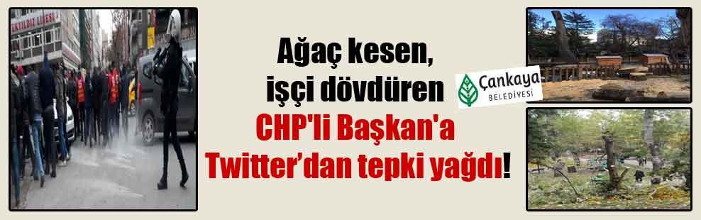 Ağaç kesen, işçi dövdüren CHP'li Başkan'a Twitter'dan tepki yağdı!