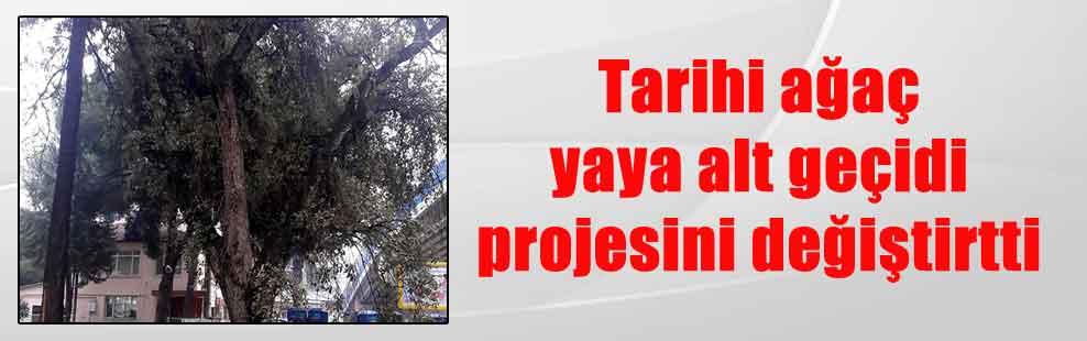 Tarihi ağaç yaya alt geçidi projesini değiştirtti
