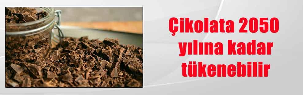 Çikolata 2050 yılına kadar tükenebilir