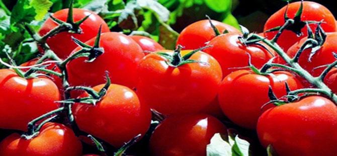 Rusya, Türkiye'den alınan domatesin kotasını 100 bin tona çıkarmayı planlıyor