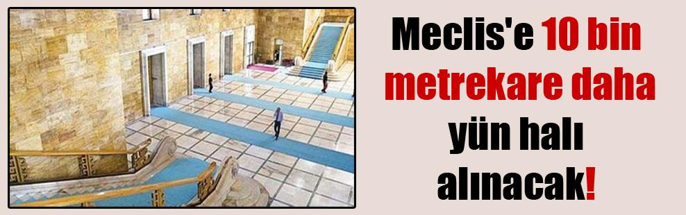 Meclis'e 10 bin metrekare daha yün halı alınacak!