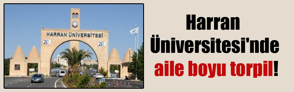 Harran Üniversitesi'nde aile boyu torpil!