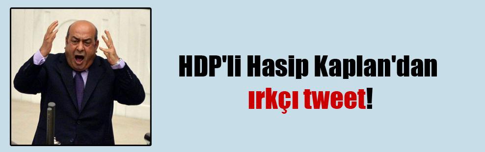 HDP'li Hasip Kaplan'dan ırkçı tweet!