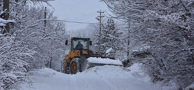Posof'ta kar, ulaşımı olumsuz etkiledi