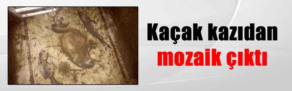 Kaçak kazıdan mozaik çıktı