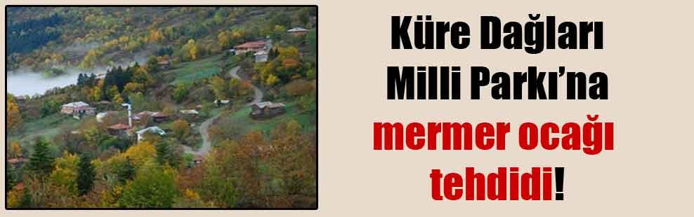 Küre Dağları Milli Parkı'na mermer ocağı tehdidi!