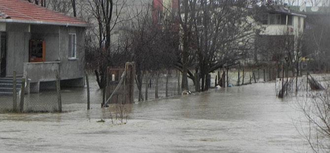 Dere taştı, evleri su bastı