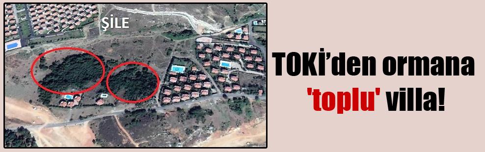TOKİ'den ormana 'toplu' villa!
