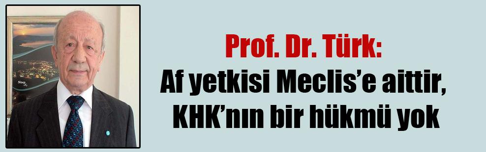 Prof. Dr. Türk: Af yetkisi Meclis'e aittir, KHK'nın bir hükmü yok