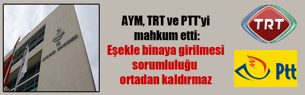 AYM, TRT ve PTT'yi mahkum etti: Eşekle binaya girilmesi sorumluluğu ortadan kaldırmaz