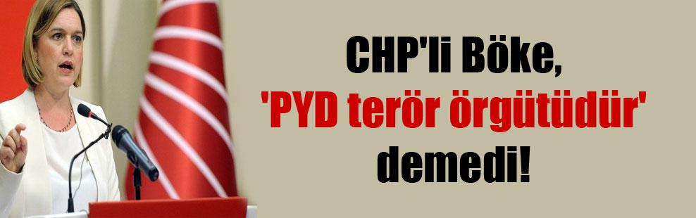 CHP'li Böke, 'PYD terör örgütüdür' demedi!