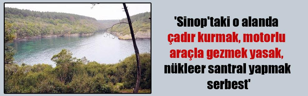 'Sinop'taki o alanda çadır kurmak, motorlu araçla gezmek yasak, nükleer santral yapmak serbest'