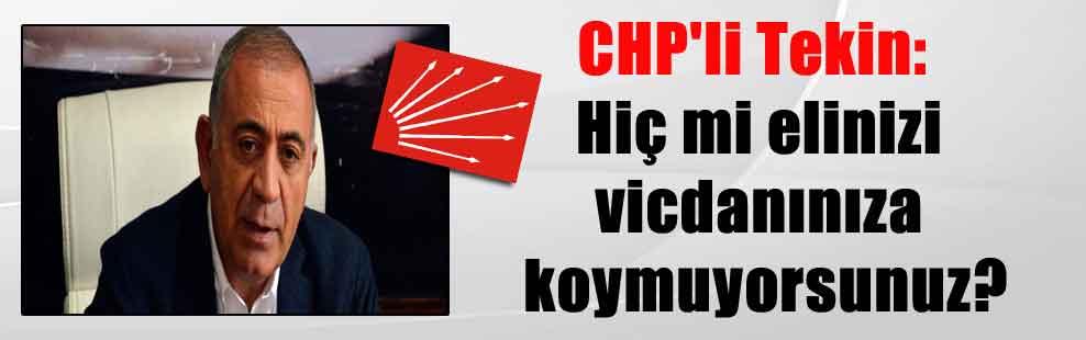CHP'li Tekin: Hiç mi elinizi vicdanınıza koymuyorsunuz?