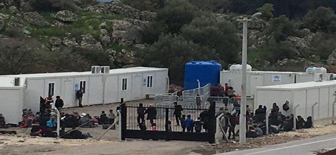 Dikili'de 220 kaçak yakalandı
