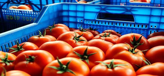 Larvalı domatesler tanzime mi gitti?