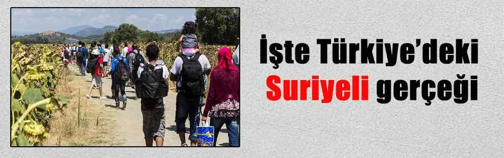 İşte Türkiye'deki Suriyeli gerçeği
