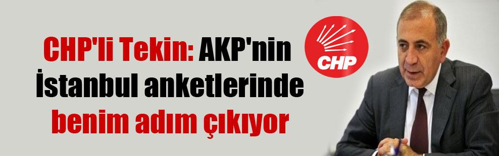 CHP'li Tekin: AKP'nin İstanbul anketlerinde benim adım çıkıyor
