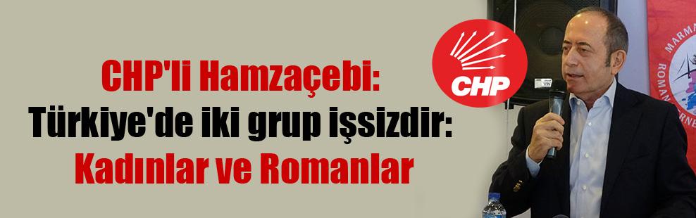CHP'li Hamzaçebi: Türkiye'de iki grup işsizdir: Kadınlar ve Romanlar
