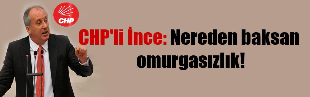 CHP'li İnce: Nereden baksan omurgasızlık!