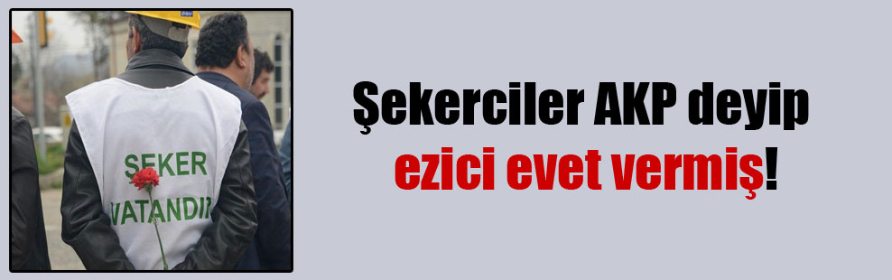 Şekerciler AKP deyip ezici evet vermiş!