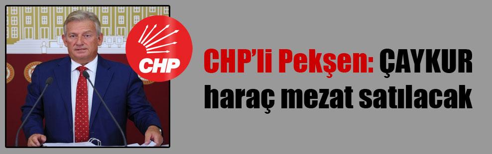 CHP'li Pekşen: ÇAYKUR haraç mezat satılacak