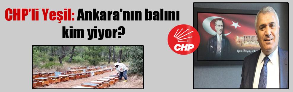 CHP'li Yeşil: Ankara'nın balını kim yiyor?