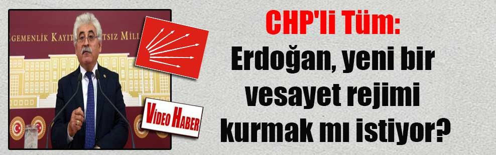 CHP'li Tüm: Erdoğan, yeni bir vesayet rejimi kurmak mı istiyor?
