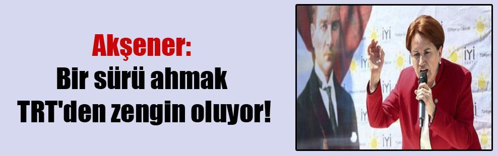 Akşener: Bir sürü ahmak TRT'den zengin oluyor!