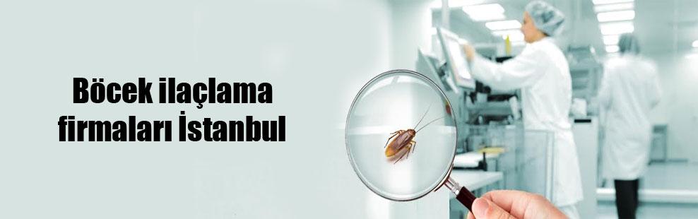 Böcek ilaçlama firmaları İstanbul