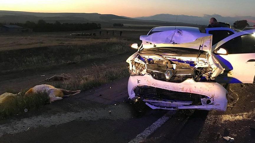 Otomobil koyun sürüsüne daldı; 20 koyun telef oldu, üç kişi yaralandı