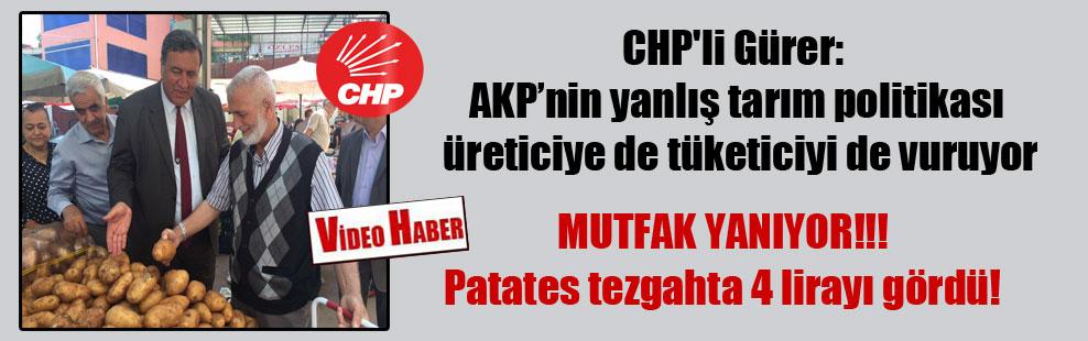 CHP'li Gürer: AKP'nin yanlış tarım politikası üreticiye de tüketiciyi de vuruyor