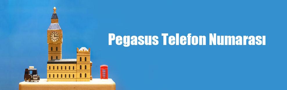 Pegasus Telefon Numarası
