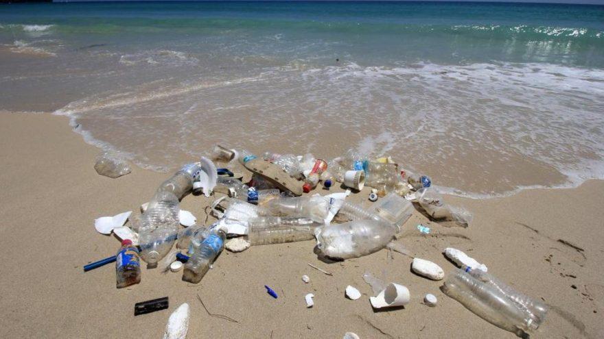 Türkiye'de günde 144 ton plastik atık denize karışıyor!