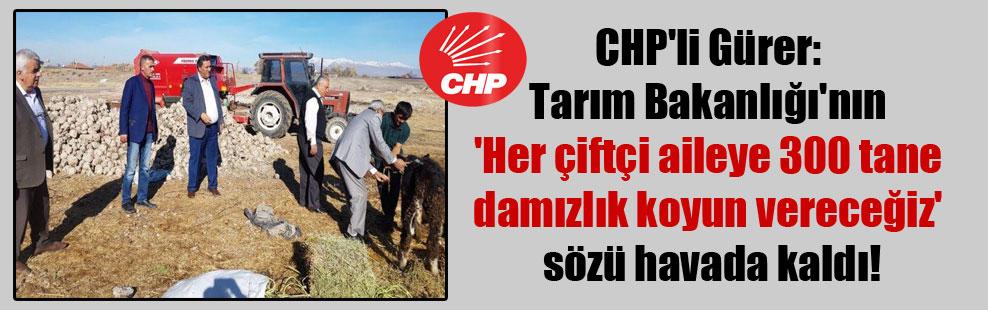 CHP'li Gürer: Tarım Bakanlığı'nın 'Her çiftçi aileye 300 tane damızlık koyun vereceğiz' sözü havada kaldı!