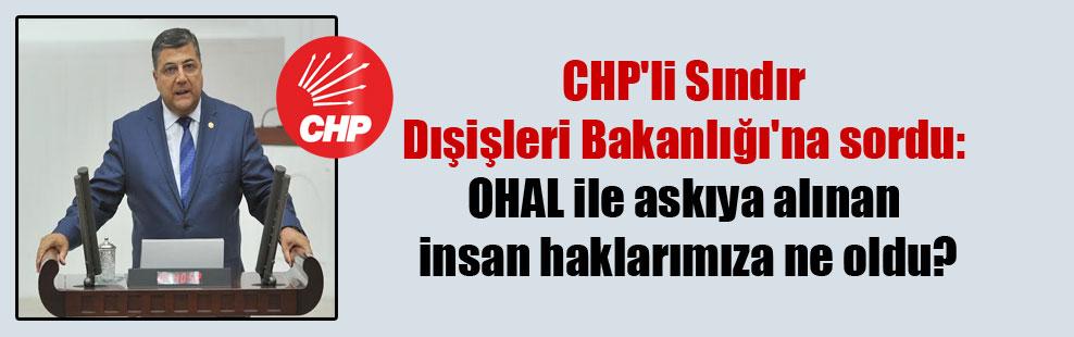 CHP'li Sındır Dışişleri Bakanlığı'na sordu: OHAL ile askıya alınan insan haklarımıza ne oldu?