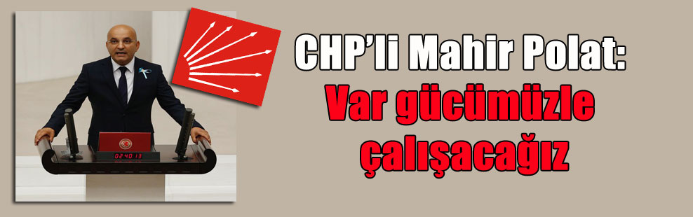 CHP'li Mahir Polat: Var gücümüzle çalışacağız