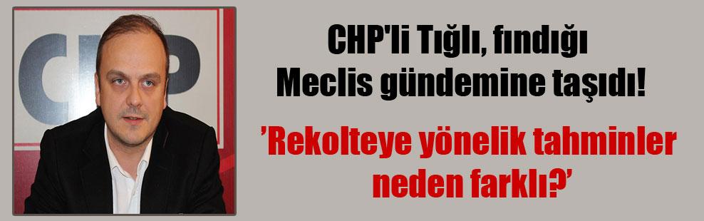 CHP'li Tığlı, fındığı Meclis gündemine taşıdı!