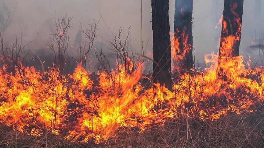 Orman yangınlarına dikkat