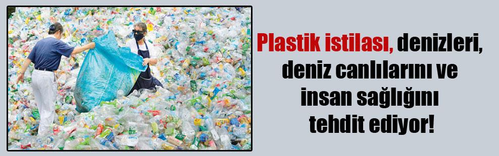Plastik istilası, denizleri, deniz canlılarını ve insan sağlığını tehdit ediyor!