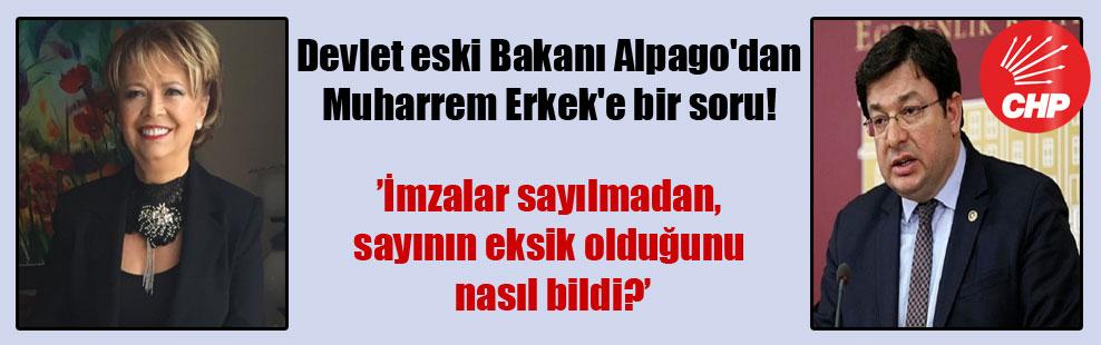 Devlet eski Bakanı Alpago'dan Muharrem Erkek'e bir soru!