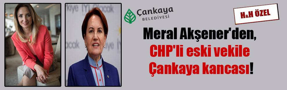 Meral Akşener'den, CHP'li eski vekile Çankaya kancası!