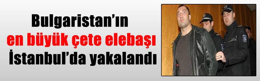Bulgaristan'ın en büyük çete elebaşı İstanbul'da yakalandı