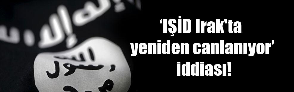 'IŞİD Irak'ta yeniden canlanıyor' iddiası!