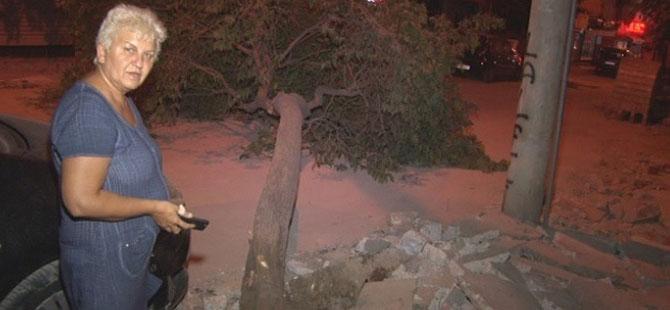 İzmir'de ağaç yola devrildi, şans eseri kimse yaralanmadı