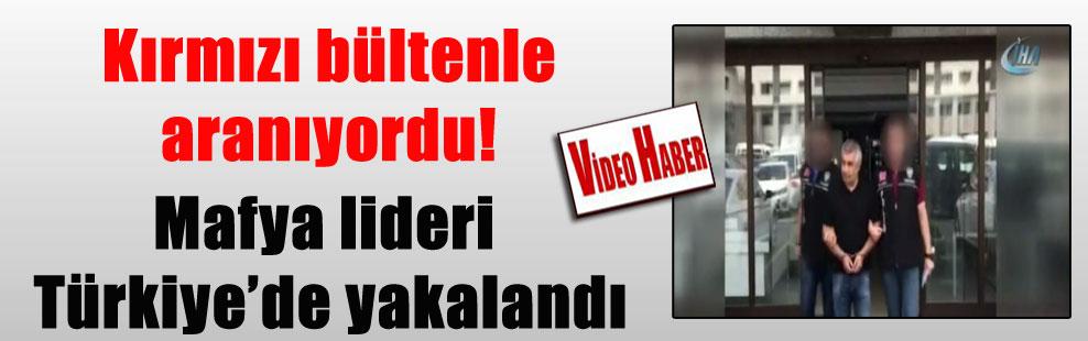 Kırmızı bültenle aranıyordu! Mafya lideri Türkiye'de yakalandı