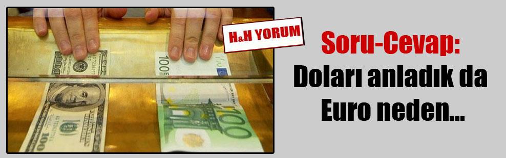 Soru-Cevap: Doları anladık da Euro neden…