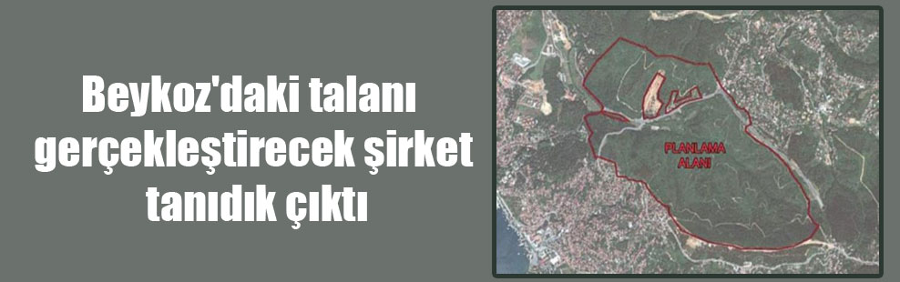 Beykoz'daki talanı gerçekleştirecek şirket tanıdık çıktı!