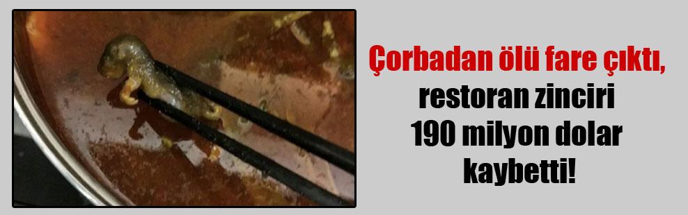 Çorbadan ölü fare çıktı, restoran zinciri 190 milyon dolar kaybetti!