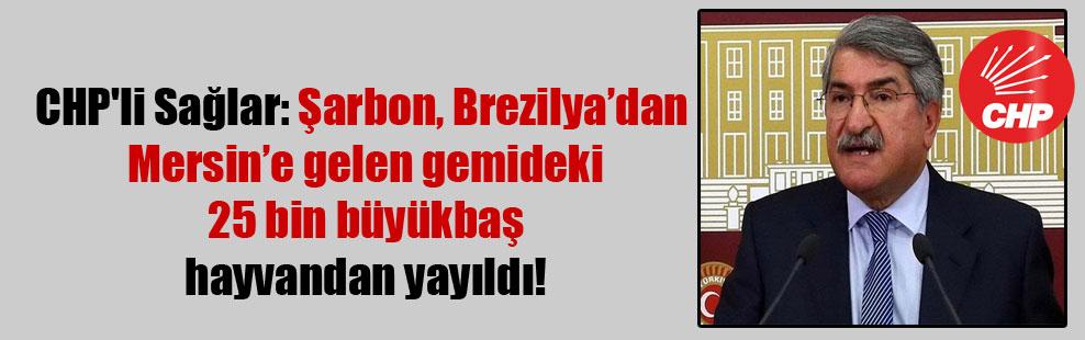CHP'li Sağlar: Şarbon, Brezilya'dan Mersin'e gelen gemideki 25 bin büyükbaş hayvandan yayıldı!