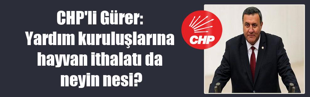 CHP'li Gürer: Yardım kuruluşlarına hayvan ithalatı da neyin nesi?